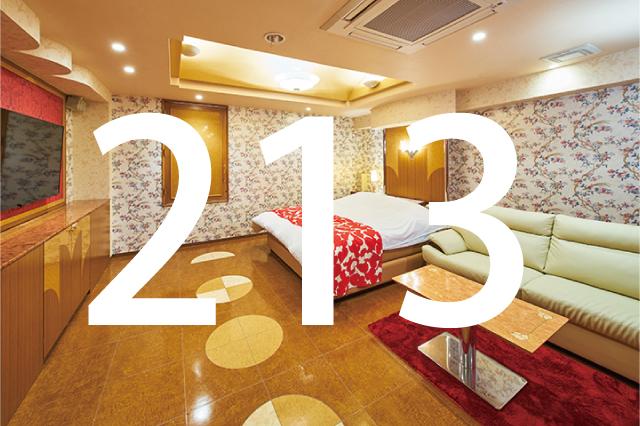 213号室