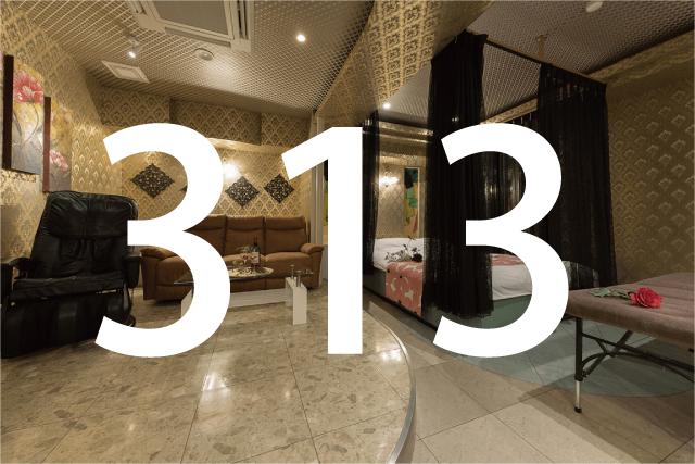 313号室